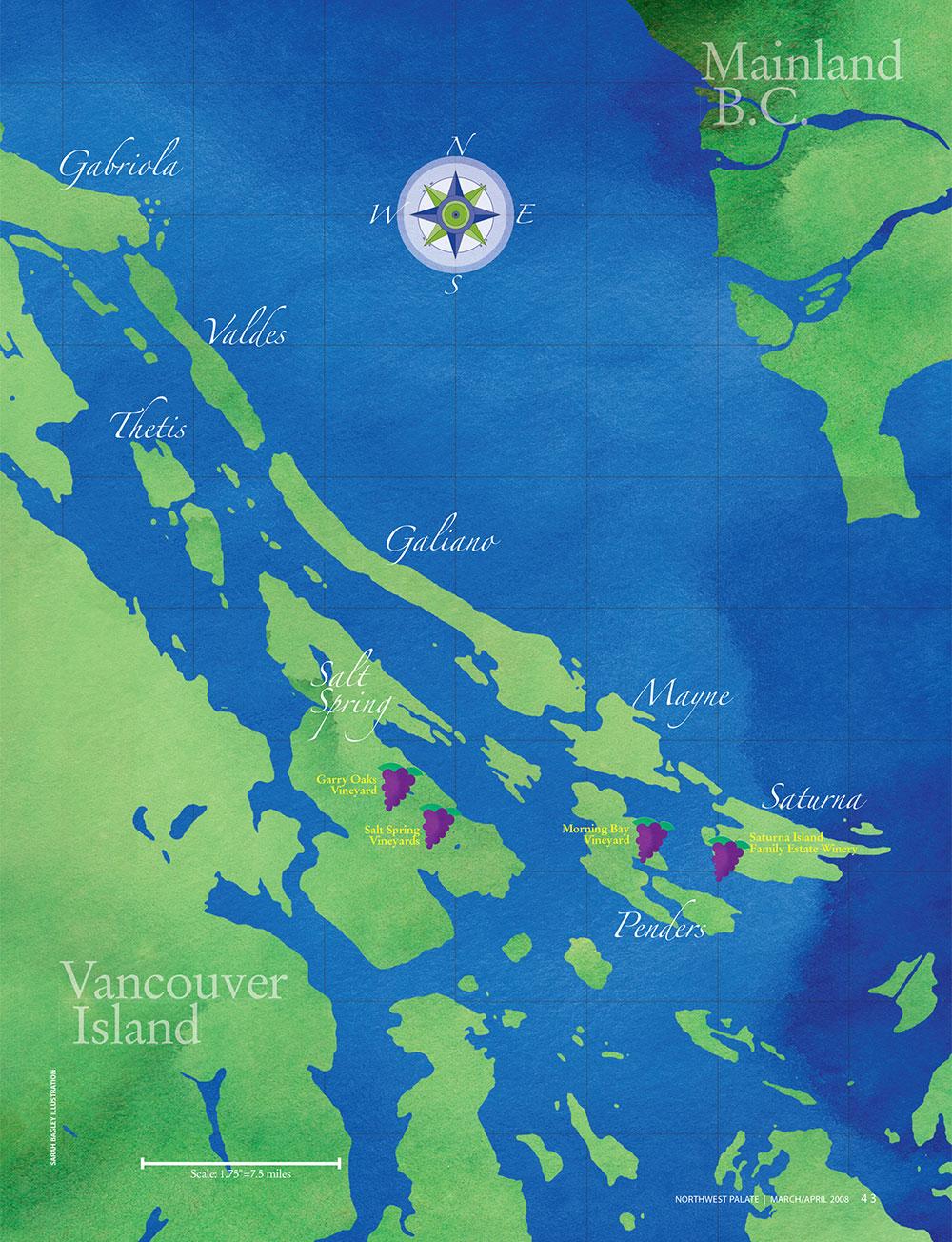 Wine_Islands_Map_Illustration_Design